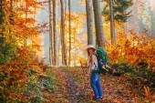 Fotografie girl in forest, girl in mountains, autumn girl, autumn forest, autumn mountains, autumn nature, autumn travel, autumn landscape, yellow forest, blondie girl, girl with dreadlocks, travel girl, autumn trip