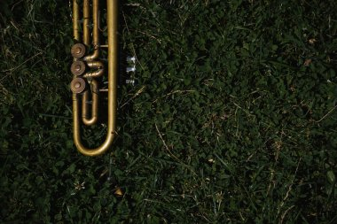 old bronze trumpet on grass