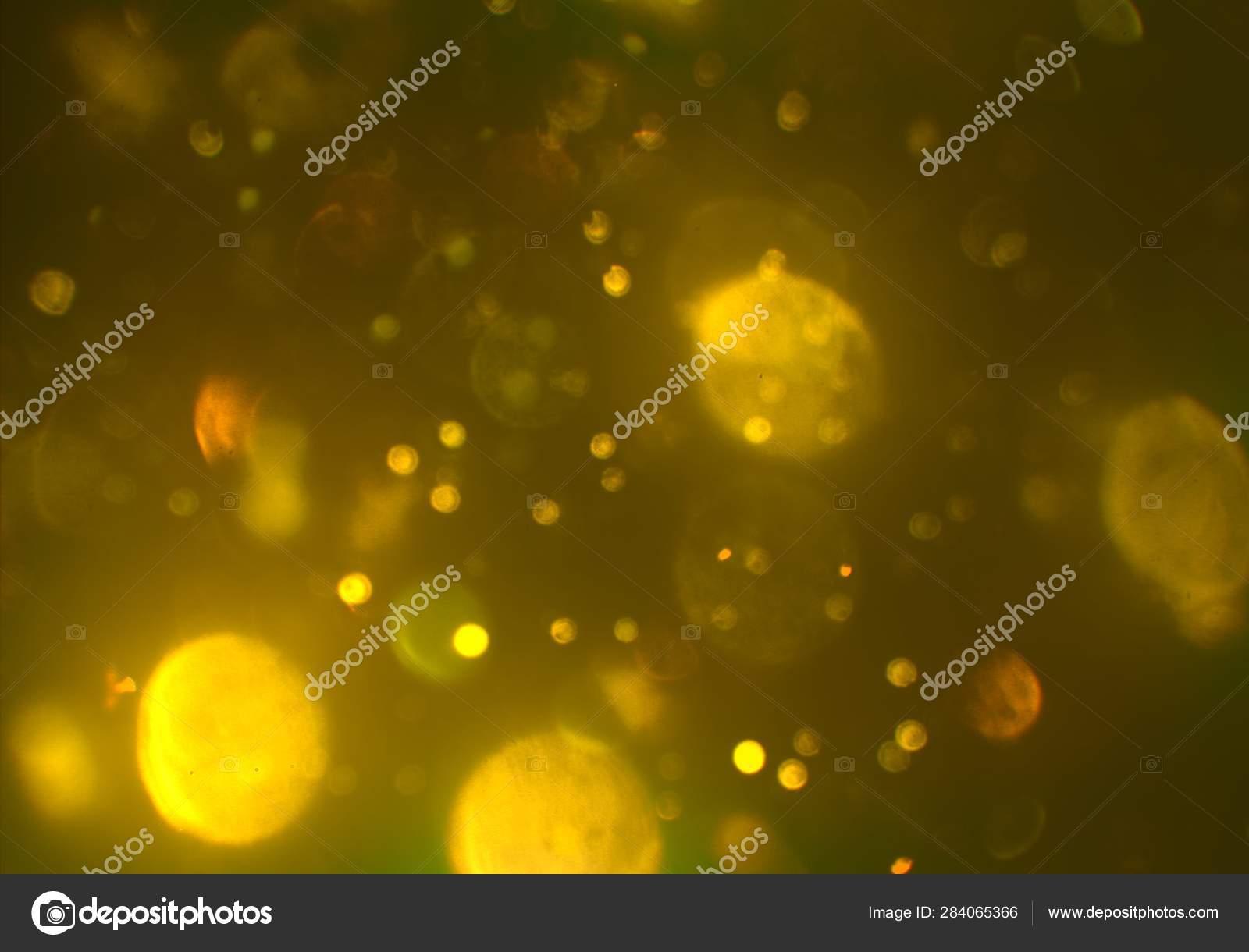 Digital Wallpaper Shiny Bokeh Lights Stock Photo C Nordenworks Gmail Com 284065366