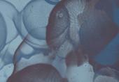 2d Abbildung. Flachwandgraffiti aus Beton. Moderne Kunst. mehrfarbige Formen und Muster. handgefertigte Sprühbilder. lackierte raue Oberfläche. Pinselstriche.