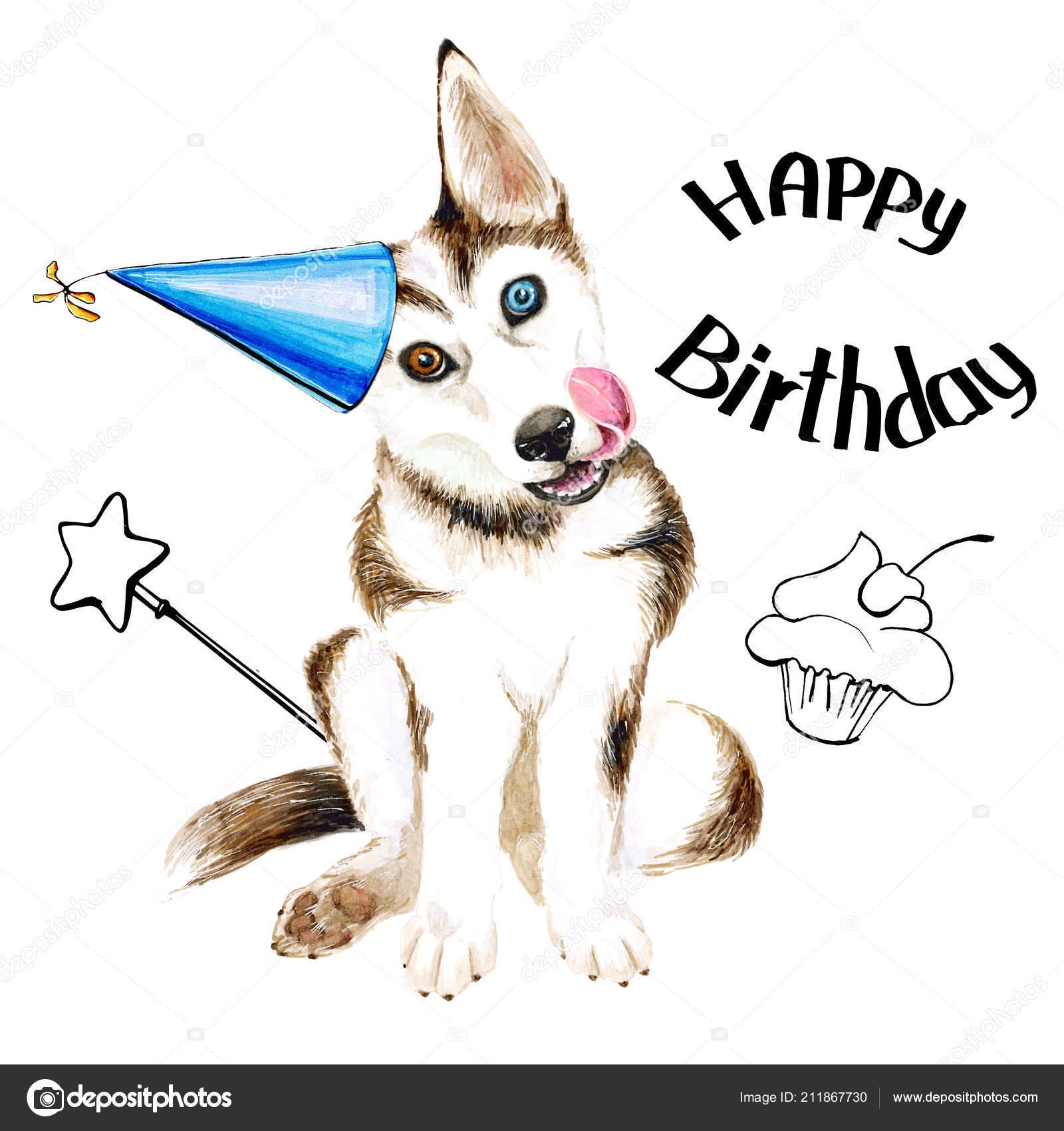 Le razze di cani husky cucciolo sveglio con gli occhi azzurri compleanno isolato su priorit - Husky con occhi diversi ...