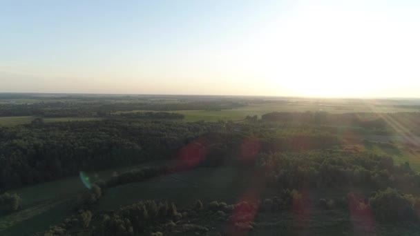 Aerial flying over forests and fields in sunny summer weather