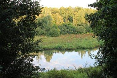 Autumn forest river landscape. Autumn forest river water scene. Golden autumn forest river view.