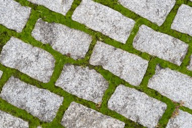 Stone gray pavers with green grass sprouted between tiles