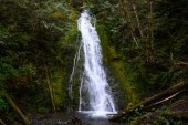 Madison Falls at Olympic National Park