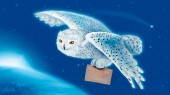 Photo flying snowy owl with post on blue background