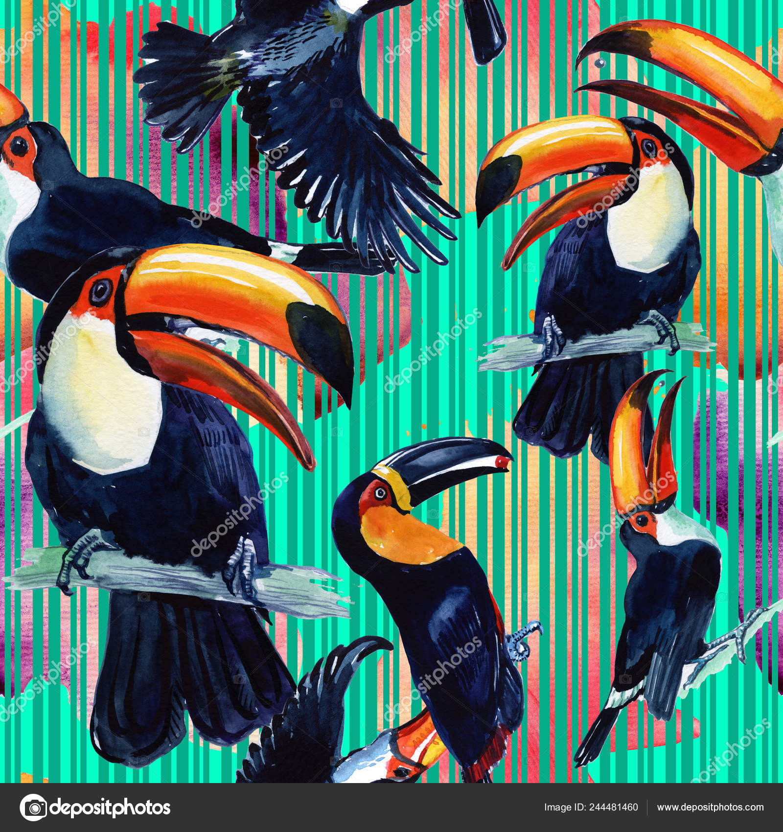 Toucan Exotic Bird Painted Watercolor Seamless Background Wild