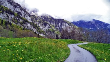 Pastures and meadows between the Churfirsten mountain range and Lake Walensee - Canton of St. Gallen, Switzerland