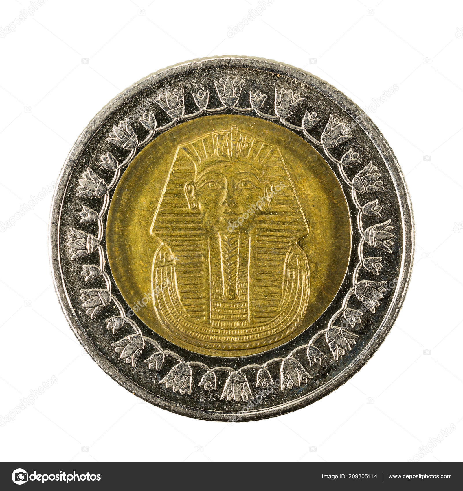 Egyptian Pound Coin Reverse Isolated White Background