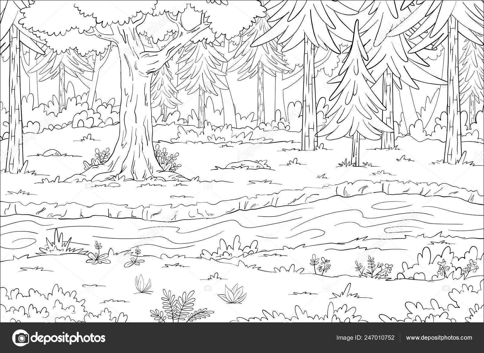 Coloring Book Landscape Stock Vector C G Wolf 247010752