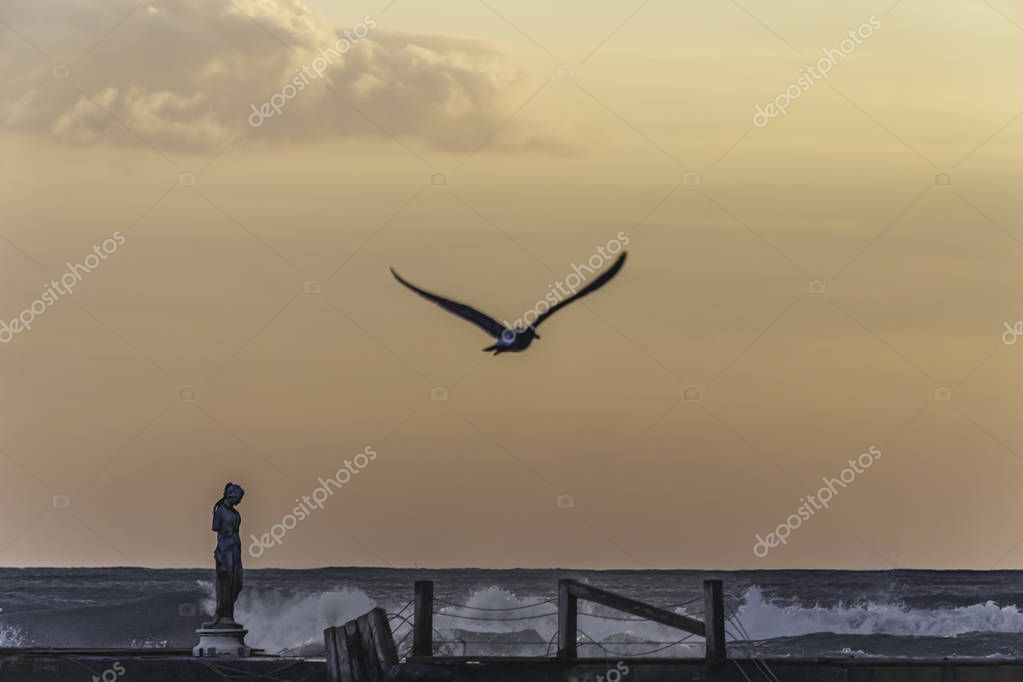 Abandoned sculpture on a sea bridge with an out of focus seagull flying away