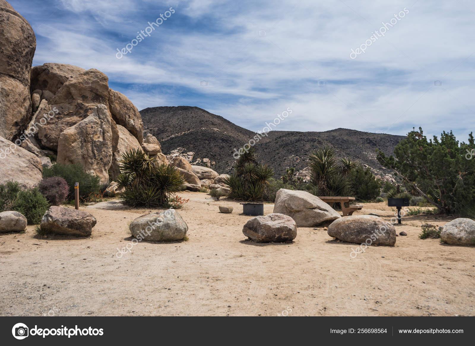 Ryan Campground In Joshua Tree National Park In California