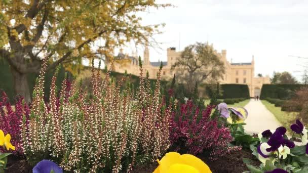 Garten mit Blumen in der Nähe von Schloss Lednice in windigen Herbsttag, Tschechien. Blühenden Park im Herbst bei Kulturlandschaft Lednice-Valtice, Süd-Mähren, Tschechische Republik. Blühende Heidekraut und Stiefmütterchen vorne, Schloss im Hintergrund