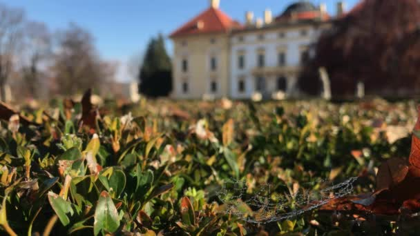 Kapky rosy na pavučiny v zelený zimostráz bush a zámku Austerlitz v slunečný podzimní den. Hluboký a mělký fokusu z Slavkov u Brna paláce Rosa kapky na pavučinka. Na podzim park na Moravě, Česká republika