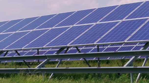 Blue cell solar panels green energy generation on grass at windy day. Eco power from photovoltaic modules generating electricity and foliage. Alternative electricity source on plant field. Solar cell for renewable energy at plants