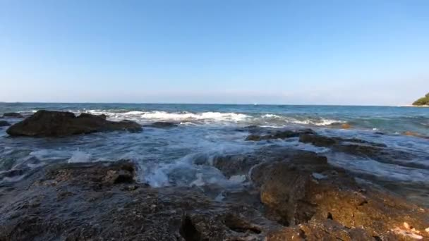 Sea incoming waves with foam washing rocky shore, white sail far away, gull flying over water against blue clear sky. Oncoming sea waves with seafoam washing-down stone coast, splash of ground swell, bird fly. Ground sea wave breaking rocks