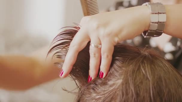 Hairdresser cutting by scissors and rumple womans hair for head-dress in hairdressing beauty saloon, closeup. Barber hands trimming ladys head taking lock in fingers for style haircut in barbershop. Working on style haircut. Hairstyle