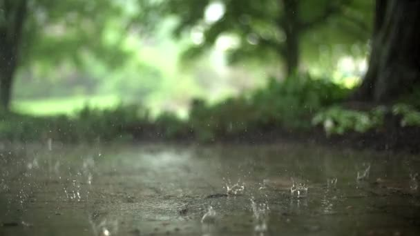Rain falling on a stone pathway in super slow motion