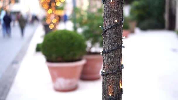 Inklusive Weihnachtsgirlanden an einem Baumstamm draußen. Silvester Straßenbeleuchtung im Park. Festliche Lichter. Kleine Glühbirnen in Nahaufnahme mit Bokeh im Hintergrund.