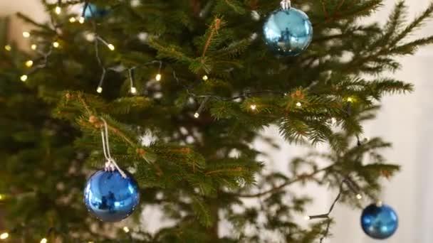 Detailní záběr na vánoční stromeček v procesu zdobení. Modré lesklé kuličky a věnce na větvích stromu s jehlami.