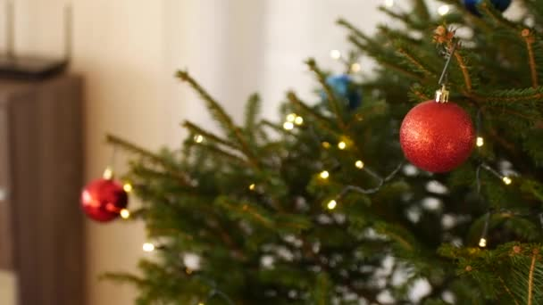 Close-up of red balls on branches of a Christmas tree.