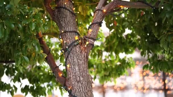 Včetně vánoční věnce na kmeni stromu venku. Novoroční pouliční osvětlení v parku. Slavnostní světla. Malé žárovky zavřít s Bokeh v pozadí.