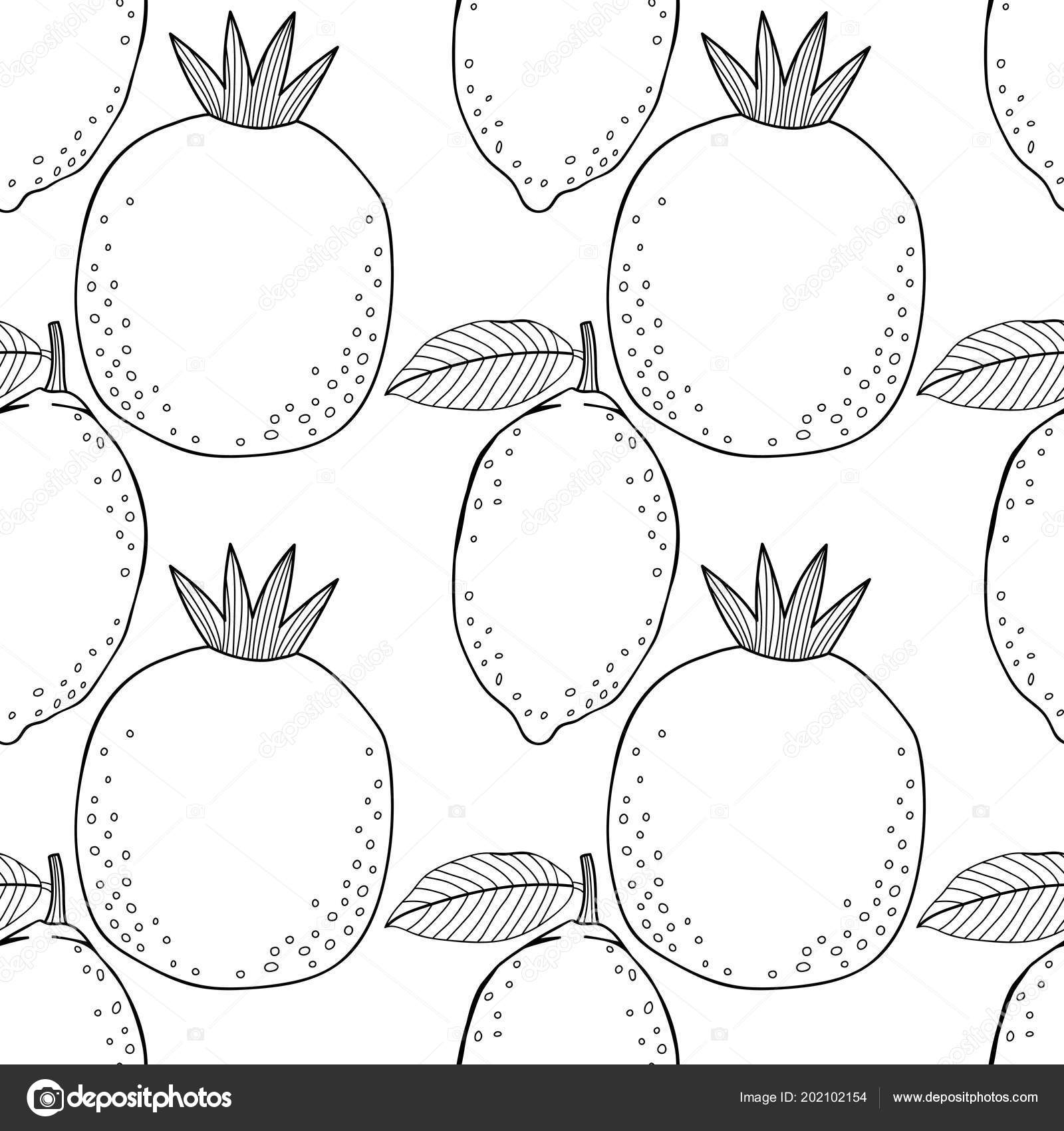 Limon Nar Kitap Sayfa Boyama Için Siyah Beyaz Resim Meyve Stok