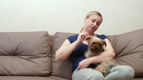 Žena sedí na gauči a tahy uklidňující Yorkshire teriér.