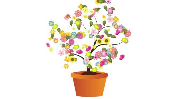 Animace s květy do vázy, které tvoří kruh