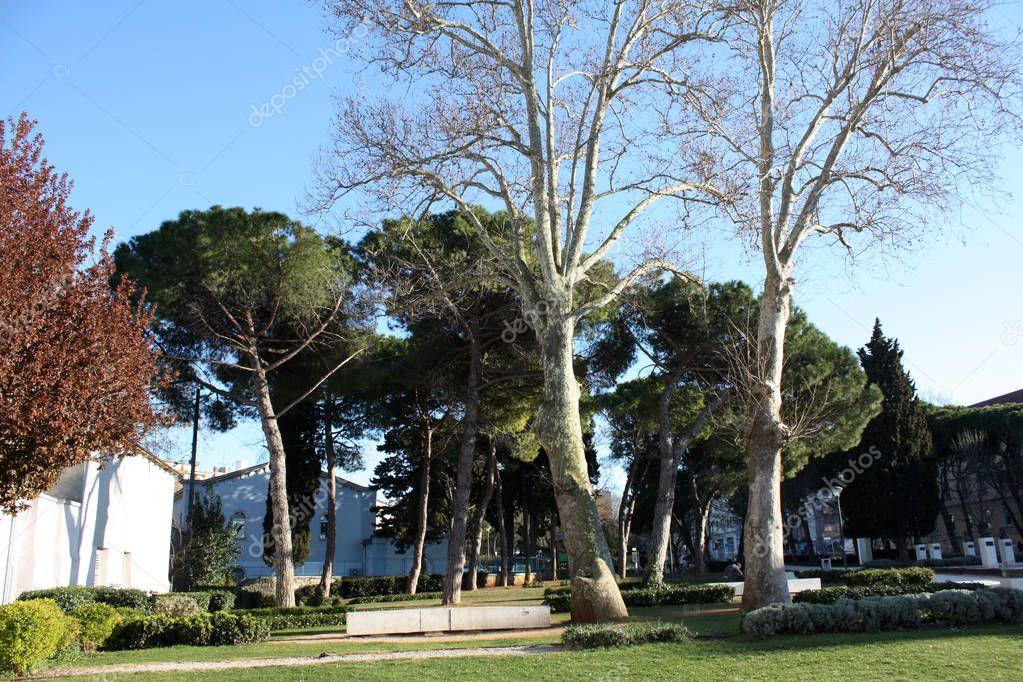 Park in Pula near amphitheater In Croatia Istria on the Adriatic seaside.
