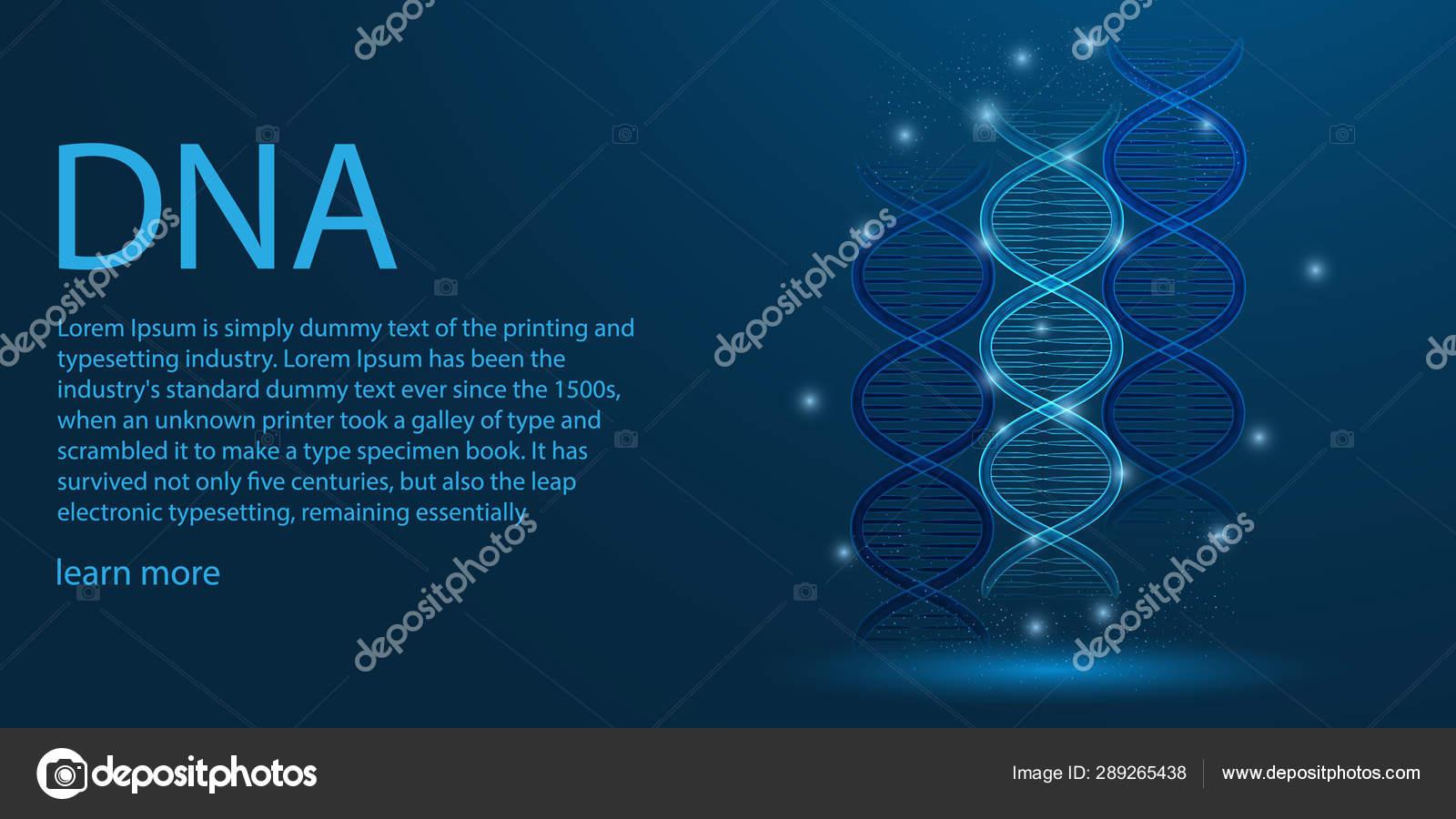 Genoma Humano Concepto De Tema De Estructura Alámbrica De