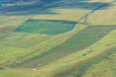 Plowed fields. Harvest. Green hilly surface. Rugged terrain. Vegetation in nature. Bird's-eye. Rural activities.