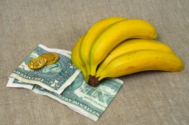 Bananas and money. The concept of a balanced healthy diet cost of yellow ripe bananas on dollars paper money banknotes with gold coins