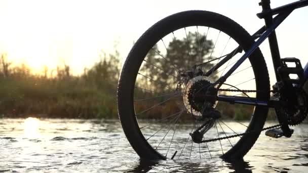 Silueta kola při západu slunce. Zadní kolo horského kola se světly uprostřed lesní řeky