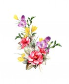 Hand made watercolor postcard with roses and crocuses with alstromeria, Spring bouquet