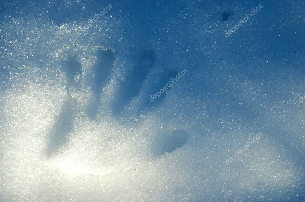 Handprint on melting snow, the concept of warming and the onset of spring