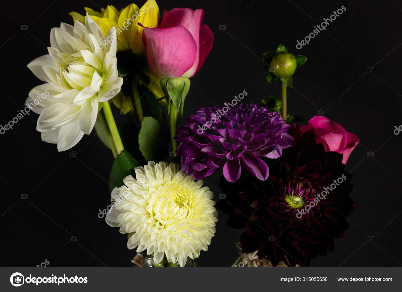 Dahlia Bouquet Single Flower Daisy Family Flower Head Stock Photo C Sarenac77 315055650