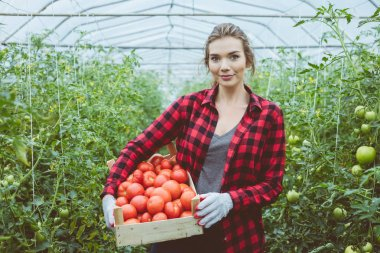 Young woman standing in greenhouse and holding box of organic tomatoes, smiling at camera.