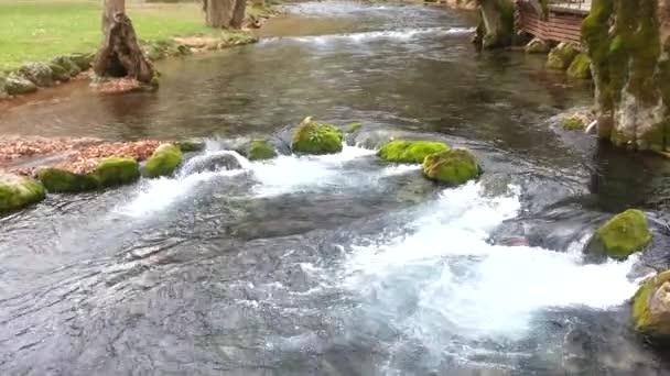 potok teče přes skály s pěknou zelení kolem něj