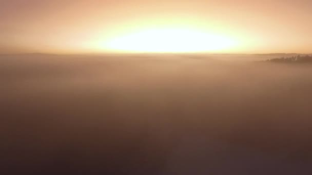 rising above the clouds on a foggy sunset