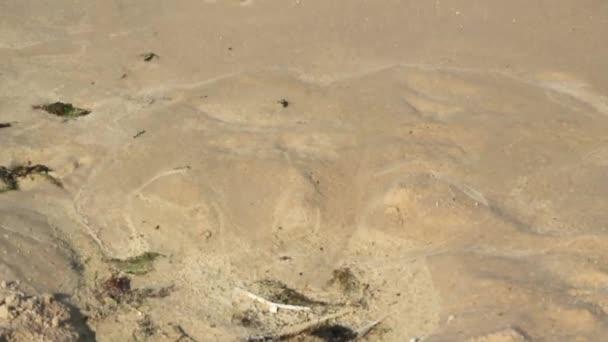 Moře písku a vlny
