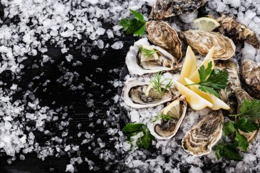 Fresh raw oysters and lemon