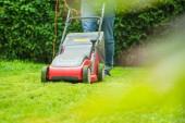 částečný pohled člověka sečení zelené trávy v zahradě v létě