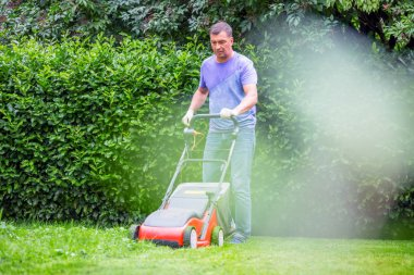 Man mowing green lawn in the garden during sunny day