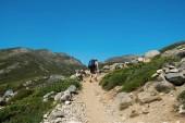 Photo hiking