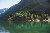 Neirofjord