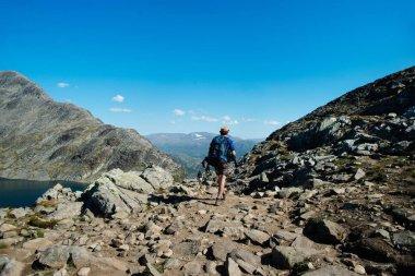 Couple hiking on Besseggen ridge in Jotunheimen National Park, Norway stock vector