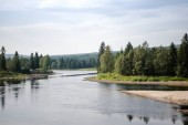 Fotografie Letecký pohled na řeku a zelené stromy na břehu ve slunečním světle, Trysil, Norsko největší lyžařské středisko