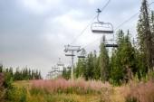 Fotografie Skilift über Feld mit Lupinen Blumen, Trysil, Norwegens größtes Skigebiet