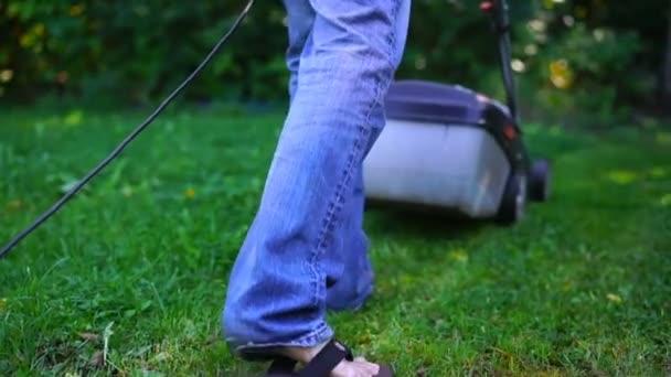 Sekání trávníku. Muž sekání trávy na zahradě pomocí sekačky